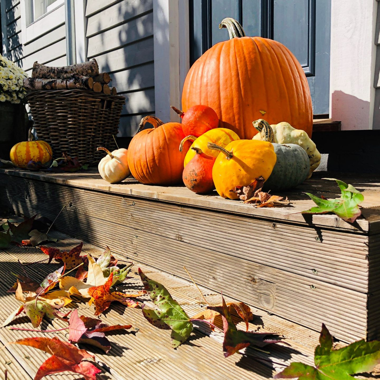 Pumpkin displays