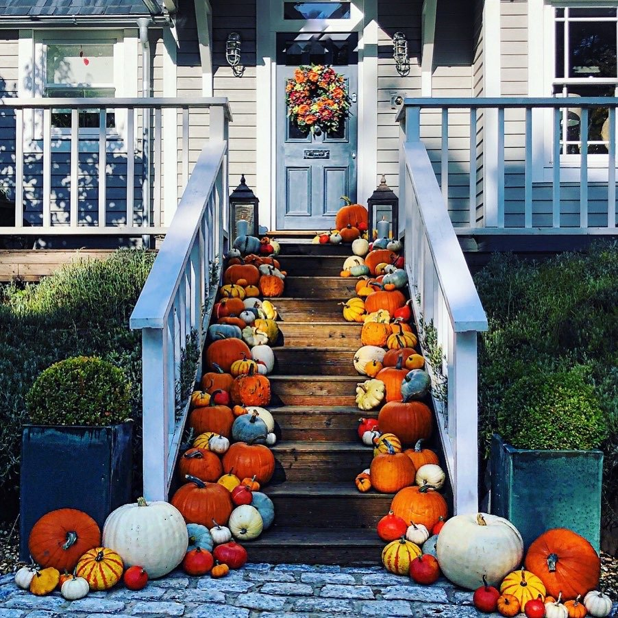 Hundreds of pumpkins on the front steps of a New England style home.