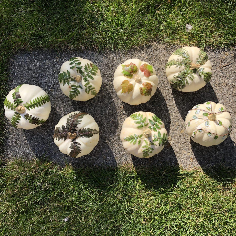 Decoupaged white pumpkins