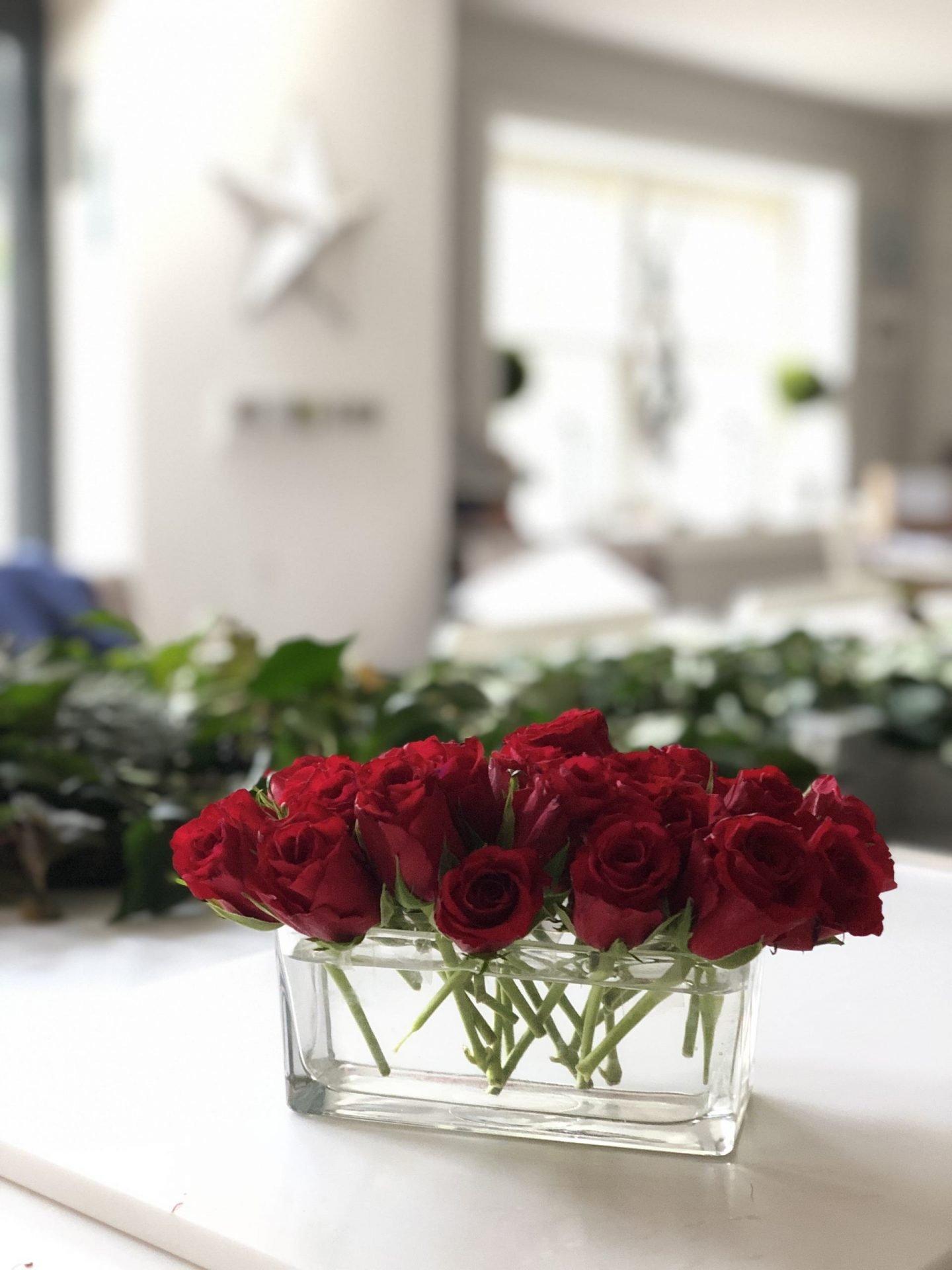 Red rose display by Jp Clark