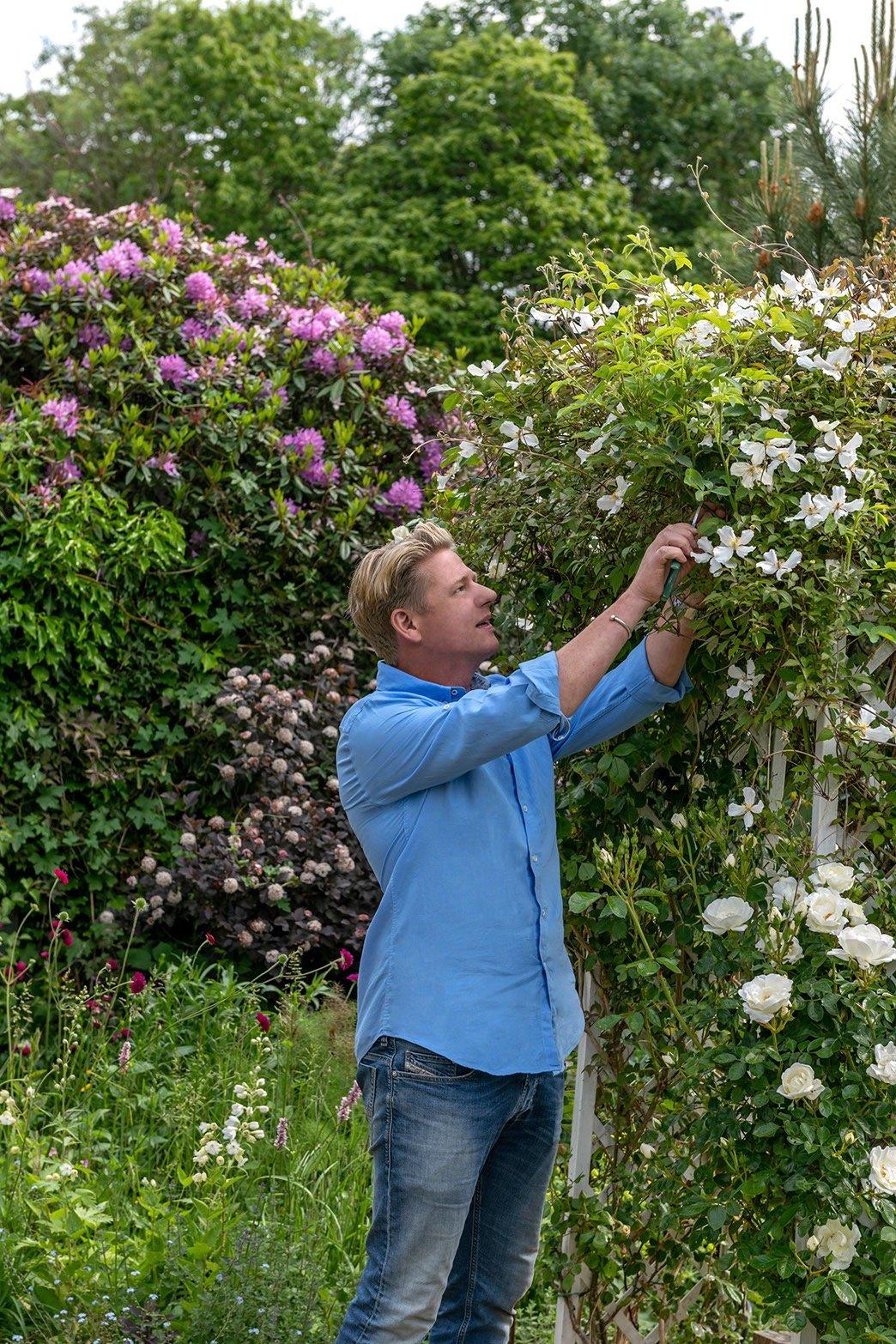 Jp Clark pruning roses
