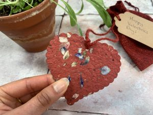 Plant A Bloomer Scalloped Heart Plantable Gift.