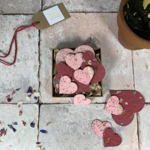 Plant A Bloomer plantable Hearts Gift Box.